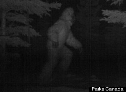 What Parks Canda said is an image of the illusive Bigfoot or Sasquatch was snapped over the Easter long weekend.