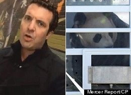 Rick Mercer clearly doesn't think much of the panda-monium of last week. (YouTube/CP)
