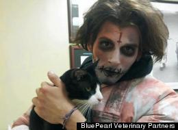 BluePearl Veterinary Partners