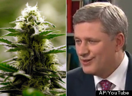 In 2010, however, Harper gave a very detailed explanation of why he's against liberalizing Canada's marijuana laws. The <a href=