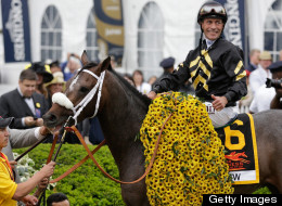 Gary Stevens smiles atop of Oxbow #6 in Winners Circle after winning the 138th running of the Preakness Stakes at Pimlico Race Course on May 18, 2013 in Baltimore, Maryland.