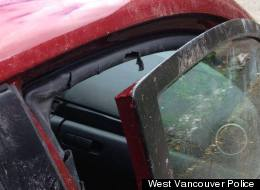 A Mazda 3 was extensively damaged after a bear allegedly attacked it in West Vancouver. (West Vancouver Police Department)