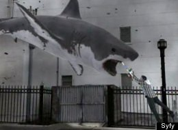 Video: 'Sharknado' in two minutes.