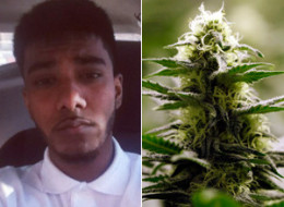 Sunith Baheerathan has lost his job after tweeting about wanting to buy some marijuana. (Twitter/AP)