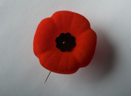 A list of Remembrance Day ceremonies in Toronto.