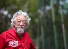 David Suzuki warns that Japan could be wiped out and that North America's west coast could be forced to evacuate if the Fukushima nuclear facility falls in an earthquake.