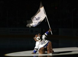 Marty the Marmot, the mascot for the Victoria Royals hockey team, won fans' sympathy after being attacked on the ice.