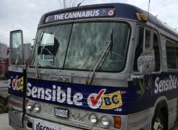 Sensible BC's Cannabus has been put up for sale on eBay.