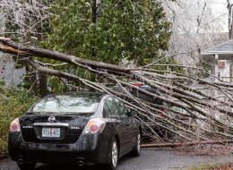 A broken tree limb rests on a parked home after a rare winter storm coated most of the South with ice on February 12, 2014 in Summerville, South Carolina.   (Photo by Richard Ellis/Getty Images)
