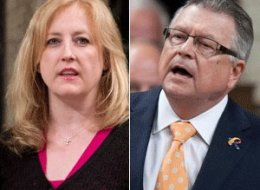 Transport Minister Lisa Raitt accused a veteran Liberal MP of comparing her to a dog in the House of Commons on Thursday. (CP)