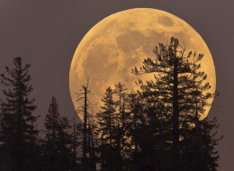 A supermoon will be visible in the night sky over Canada on Saturday, owing to the moon's position in Earth's orbit.
