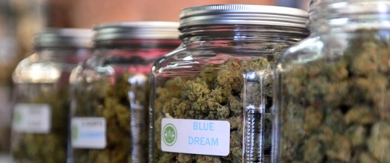 Illinois Legalizes Medical Marijuana For Children With Seizures
