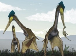 An artist's illustration of the Azhdarchid pterosaur species Quetzalcoatlus northropi.