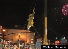 Walleye Madness