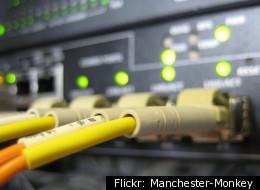 Flickr: Manchester-Monkey