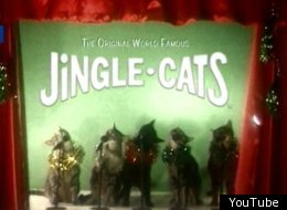 Jingle Cats Singing O Come All Ye Faithful
