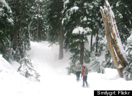 Mount Seymour gets nearly 33 feet of snow annually.