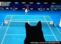whosay.com/novakdjokovic