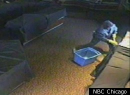 Surveillance cameras caught a group of men smashing jewelry cases at a store in Indiana.
