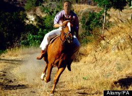 This is 'probably' what David Cameron looks like riding a horse