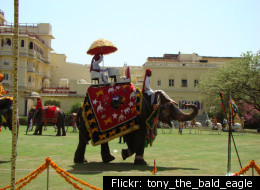 Elephant polo is played in Thailand, Nepal, Sri Lanka and Rajasthan (India).
