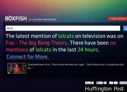 Boxfish, The Twitter For TV Exclusive Trial