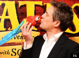 Hugh Grant at the Pirates! In an Adventure With Scientists premiere