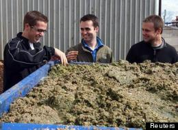 EcoScraps (L-R) co-founder Craig Martineau, co-founder Dan Blake and former colleague Brandon Sargent look at mulched food at the EcoScraps facility in Salt Lake City, Utah.