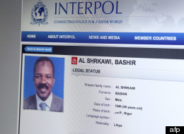La notice rouge d'Interpol sur Bashir Saleh.