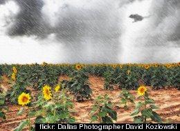 flickr: Dallas Photographer David Kozlowski
