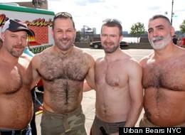 Urban Bears NYC