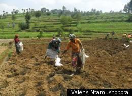 Valens Ntamushobora