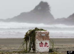 Tsunami debris from Japan is slowly washing up on B.C.'s coastline, although Ucluelet's mayor says it's coming faster. (Canadian Press)