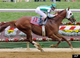 In this May 19, 2001, file photo, Point Given, with jockey Gary Stevens aboard, drives to the finish to win the 126th running of the Preakness horse race at Pimlico Race Course in Baltimore. Though Point Given didn't win the Kentucky Derby in 2001, he did go on to win the Preakness and Belmont Stakes races. (AP Photo/Daniel P. Derella, File)