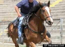 SF Mounted Unit