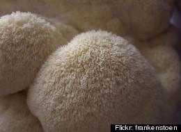 Flickr: frankenstoen