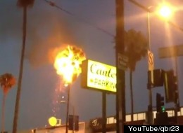 This happened outside of Canter's Deli on Fairfax Avenue earlier this month, when some younguns in the rap group Odd Future threw a bottle rocket up into the palm tree.