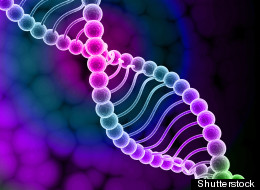 Scientists have found a way to store an entire textbook in the code of DNA.