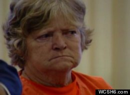 Carol Field, 66, pleaded guilty to six counts of arson for starting a string of fires across southern Maine.