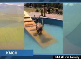 KMGH via Newsy