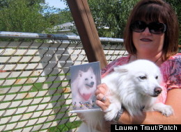 Bonnie Fouts-Bell, with a picture of Powder and dog Aspen. (Lauren Traut/Patch)