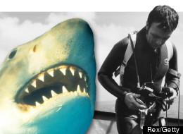 Shark expert Ron Taylor died on Sunday