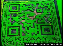 The Kraay Family Farm in Alberta, Canda created the world's largest QR code for the farm's annual corn maze.