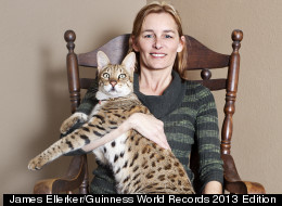 ... Biggest House Cat In The World 2014