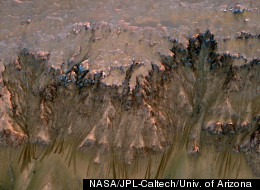 This image combining orbital imagery with 3-D modeling shows flows that appear in spring and summer on a slope inside Mars' Newton crater.