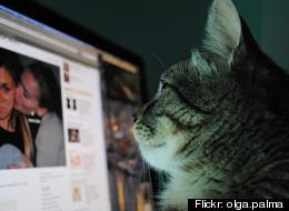 Flickr: olga.palma