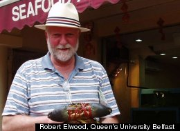 Robert Elwood, Queen's University Belfast