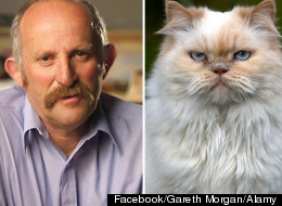 Gareth Morgan, a prominent New Zealand economist, believes that a cat-free country will help in the conservation of native bird species