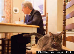 Stephen Harper's 'day in the life' photo gives a glimpse into the prime minister's life. (PM Stephen Harper, Flickr)